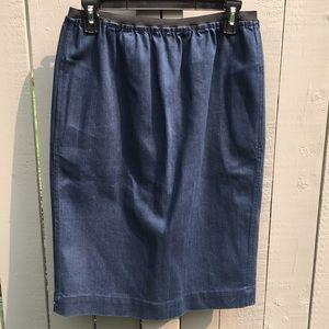 Lanvin x Acne Collaboration Skirt Size 38
